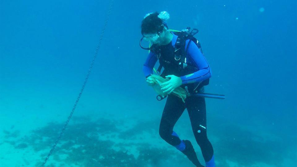 Diver ocean clean up